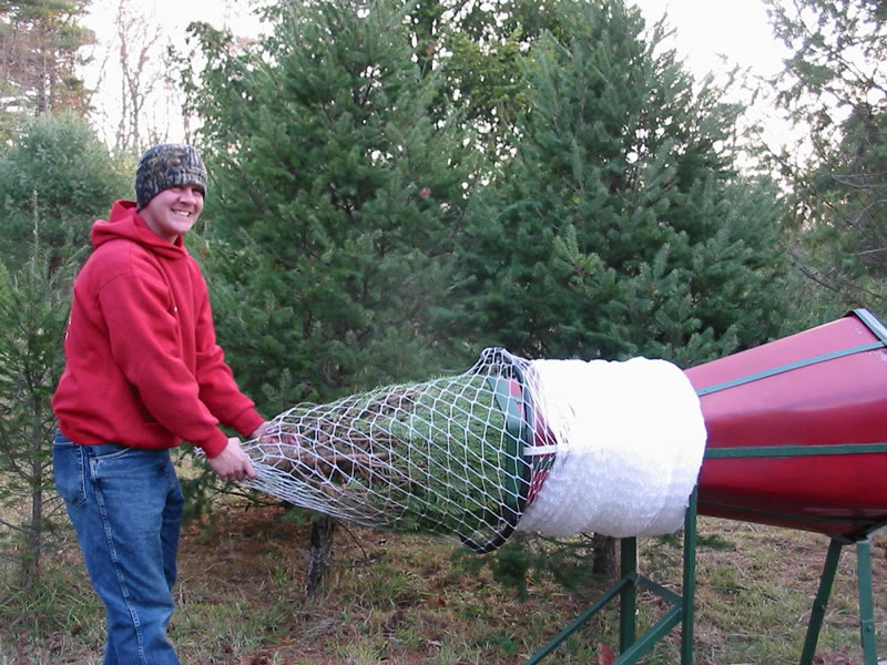 Eisele Christmas Tree Farm