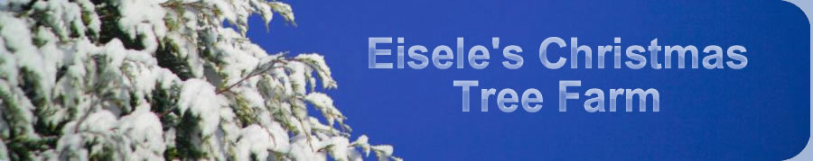 Eisele Tree Farm